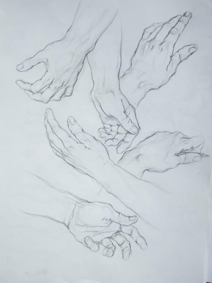 planche d\'étude de mains sur format raisin