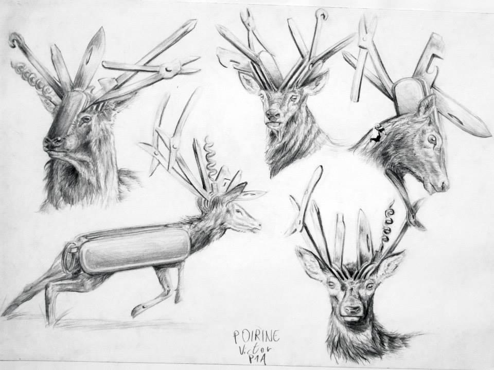étude d\'hybridation entre un cerf et un couteau Suisse