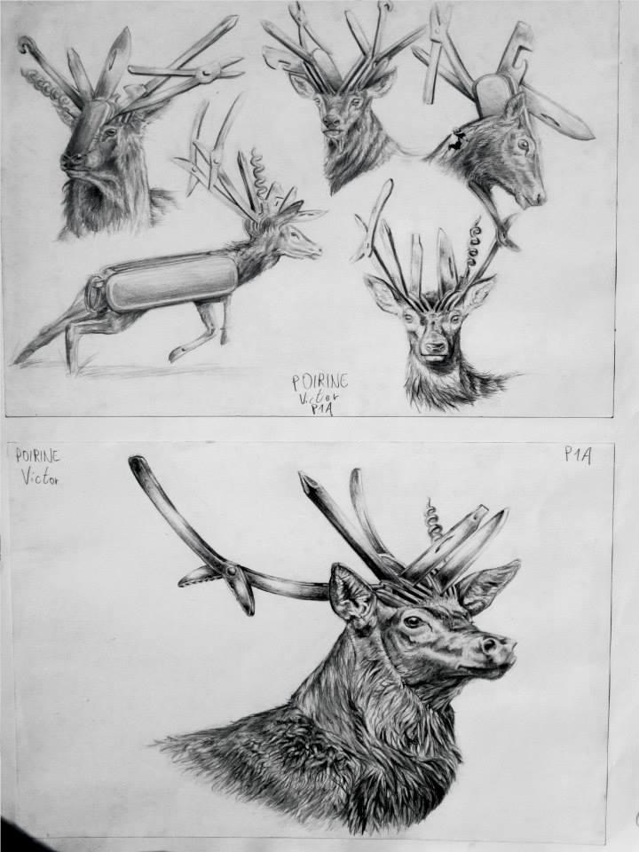 étude d\'hybridation entre un cerf et un couteau SuisseChoix Final d\'hybridation