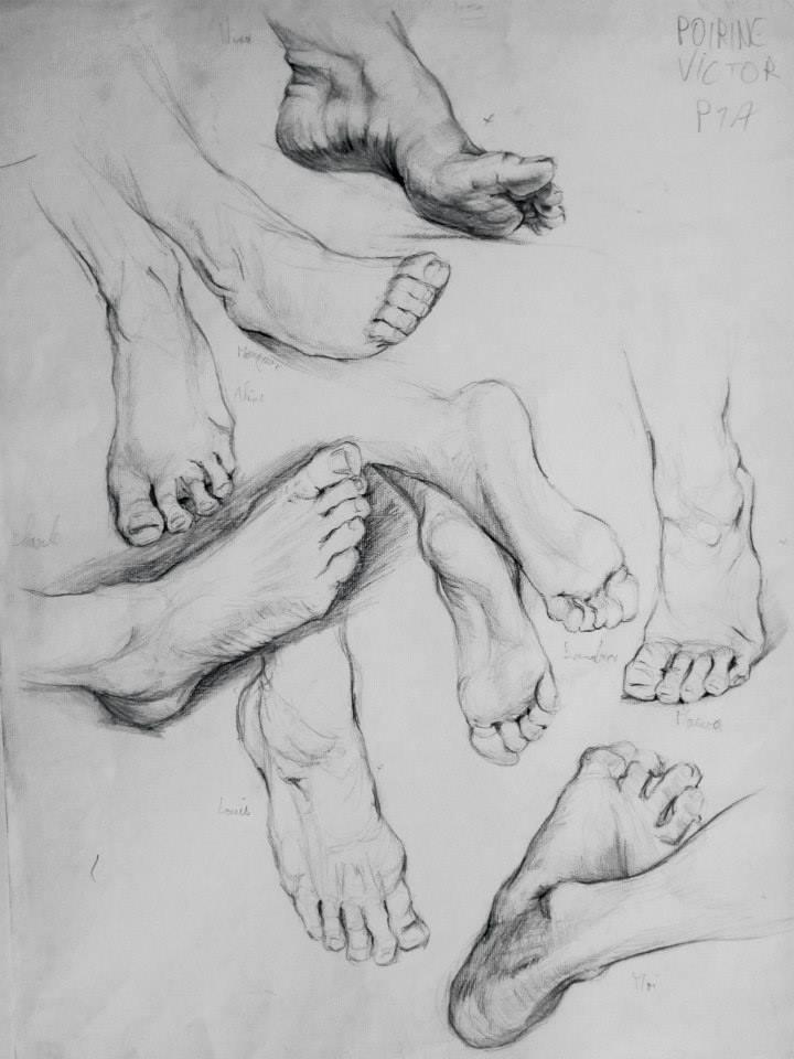 études de pieds