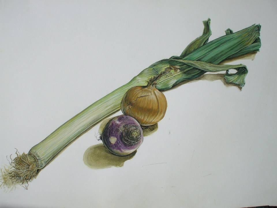 étude de légumes à la gouache