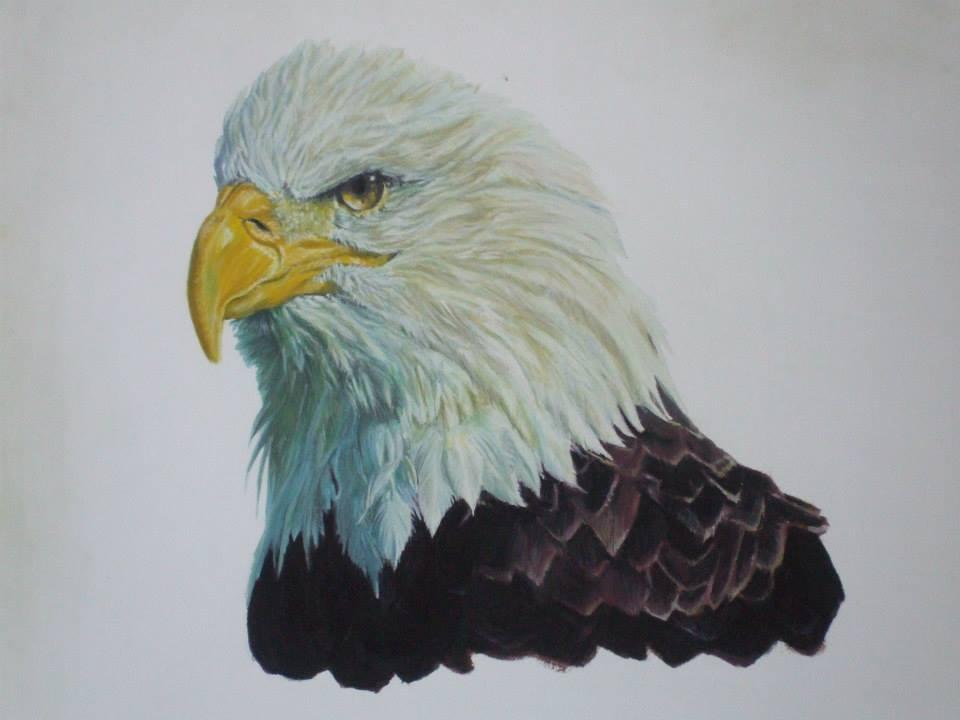 aigle peint à la gouache gouache
