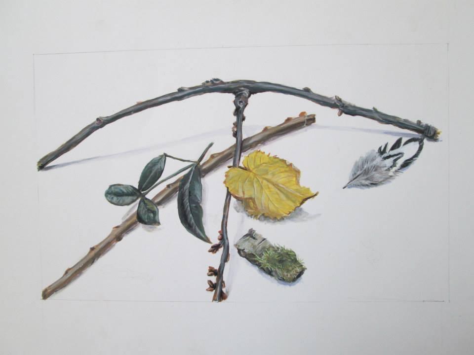 étude de feuilles, de branches et d'une plume à la gouache