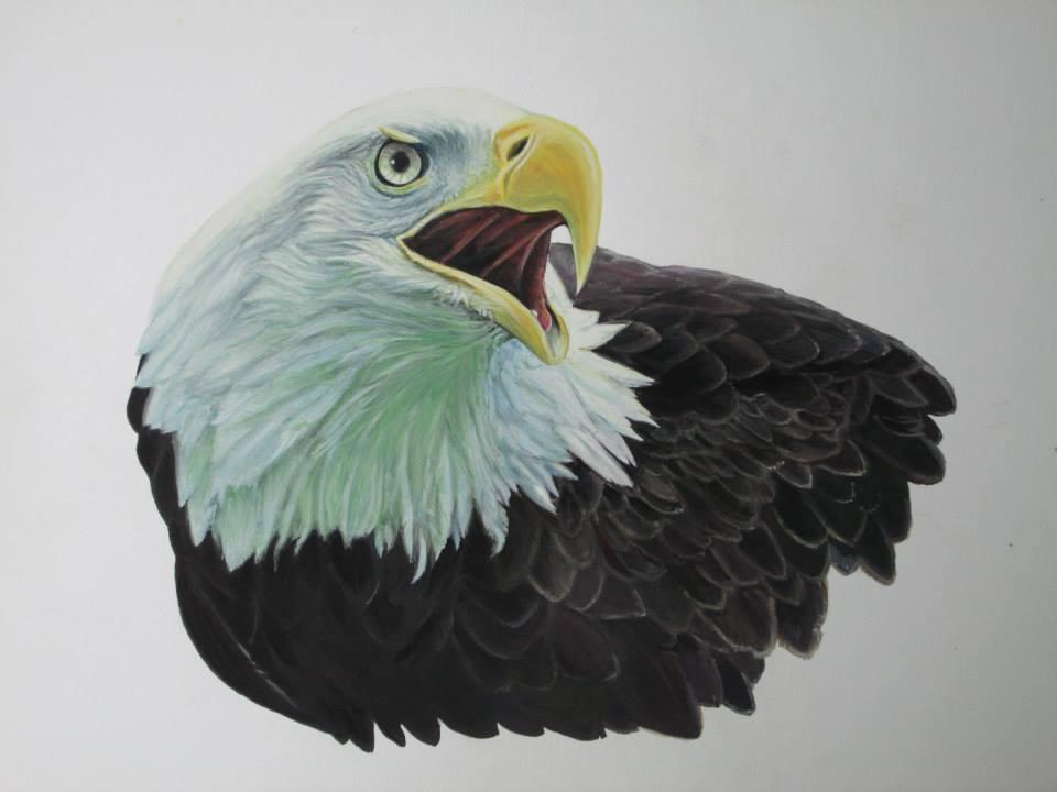 aigle N°2gouache