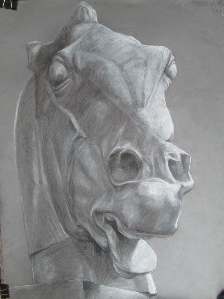 tête de cheval, plâtre, fusain et craie sur papier gris