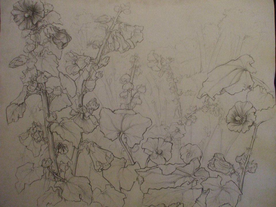 composition de roses trémières