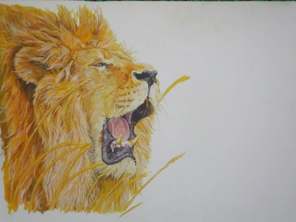 un lion à gouache