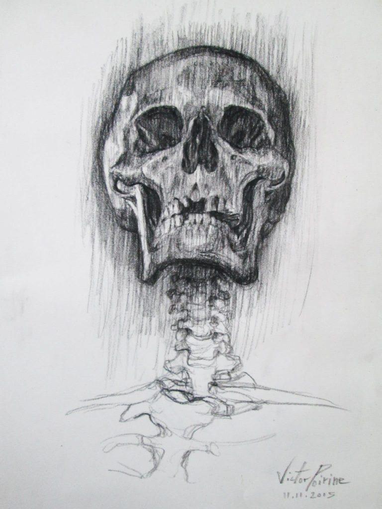 crâne humain au musée Fragonardfusain