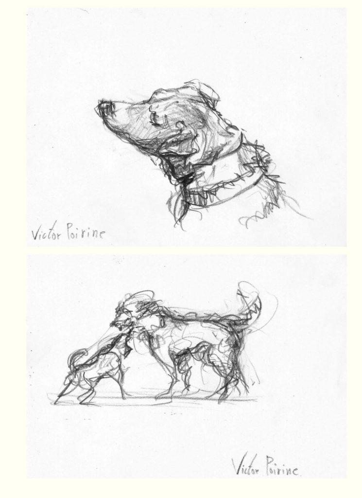 croquis du jack russel d\'un ami et un autre croquis du même chien jouant avec un autre chien