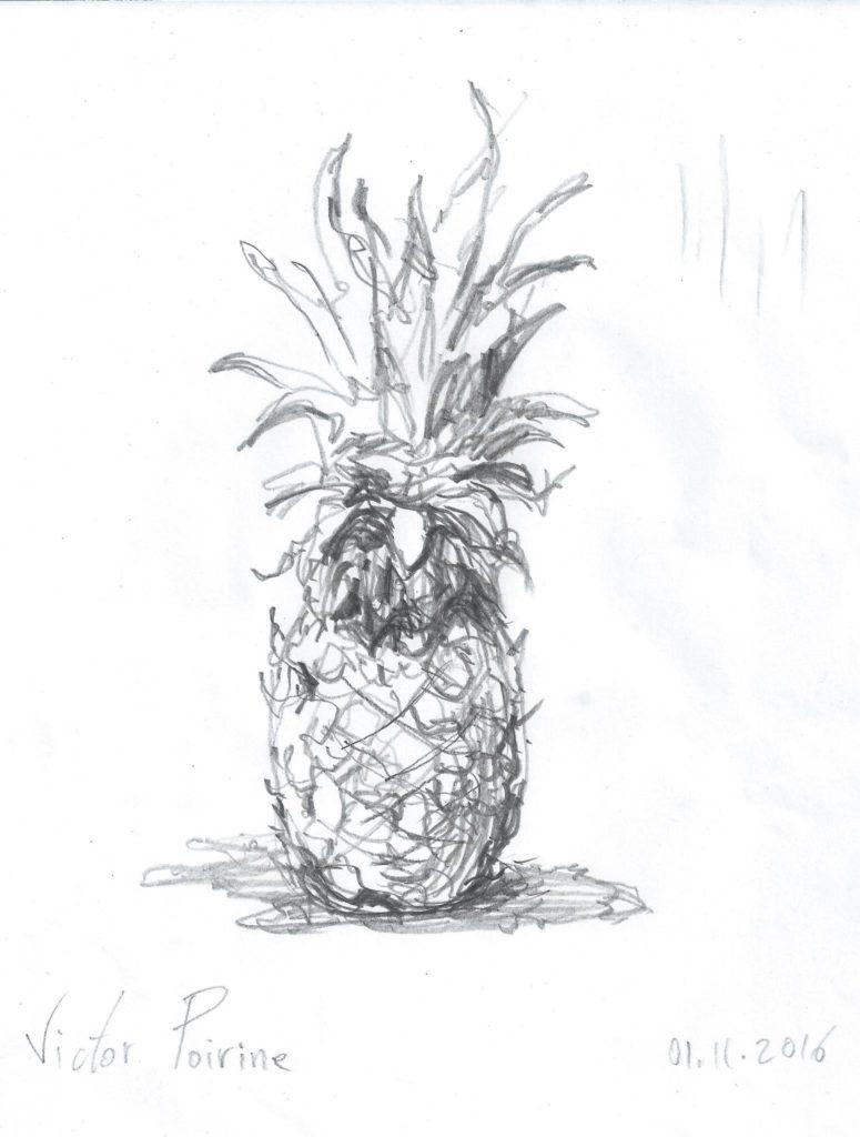 croquis d\'un ananas pour donner un exemple durant un cours