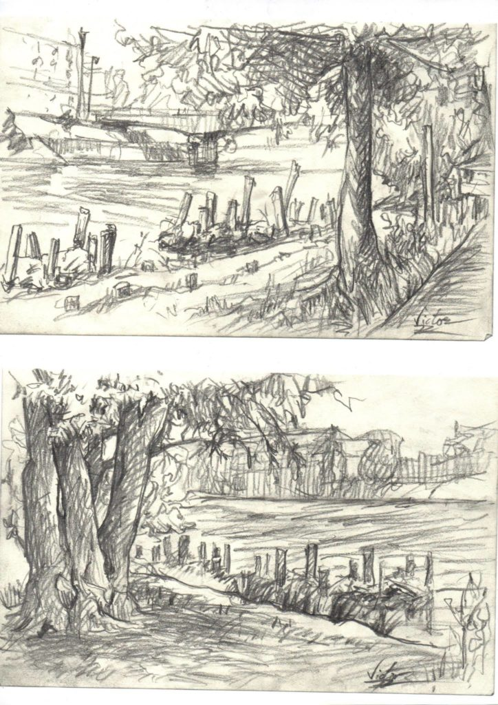 croquis d\'arbres en bord de Seine