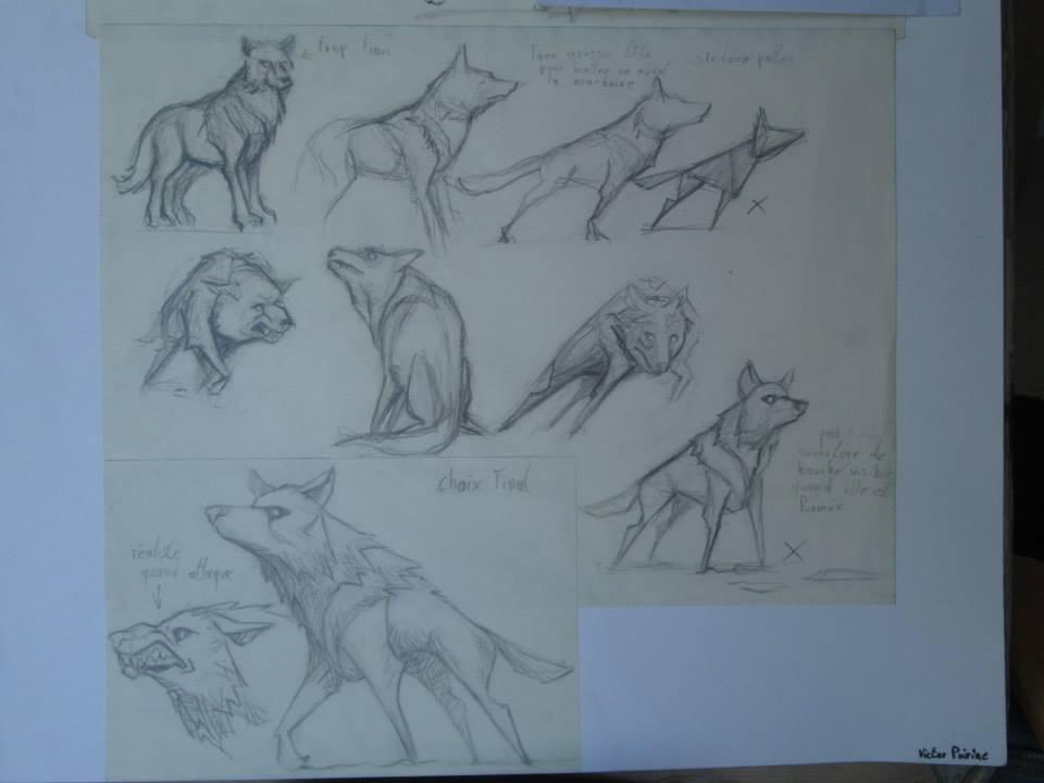 50 euros -phase de recherche de stylisation du loup