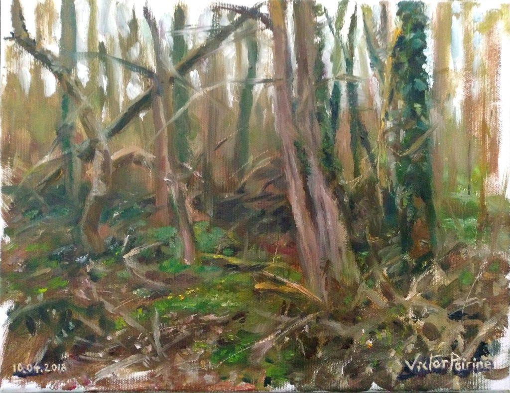 Sous bois près du chemin du vieux loup à Flainvalle. 35X27cm. Huile sur toile