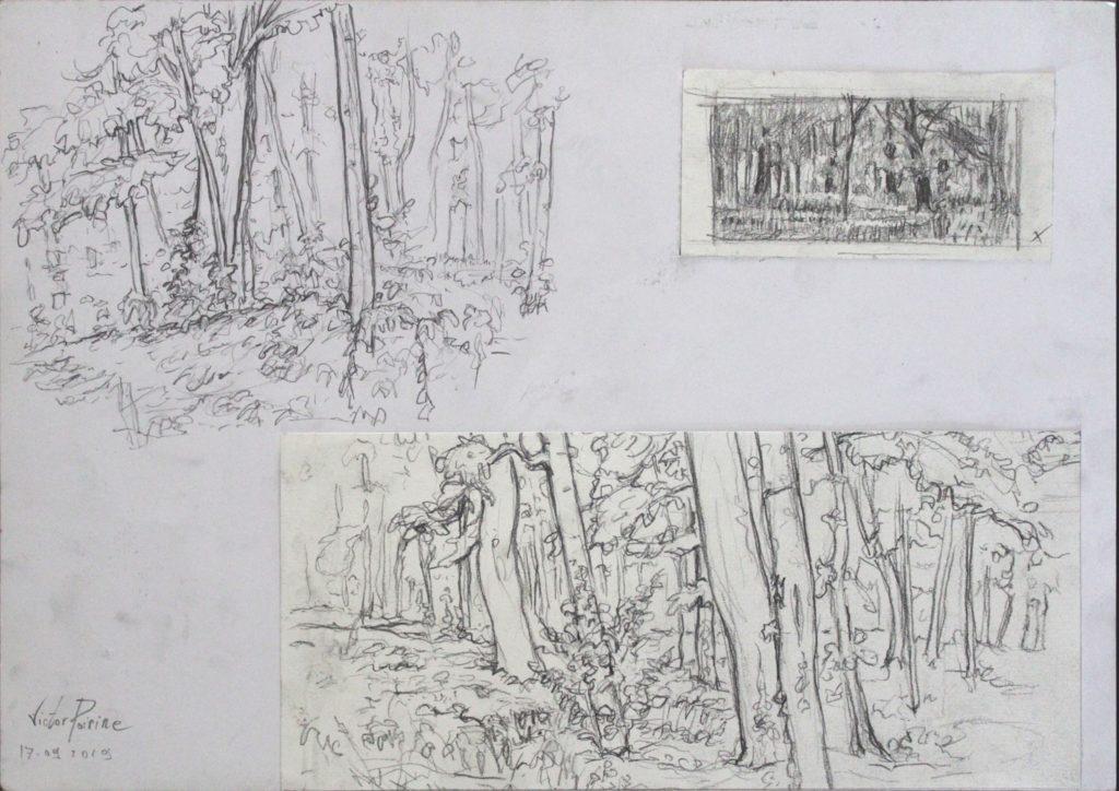 croquis de recherche dans un bois.