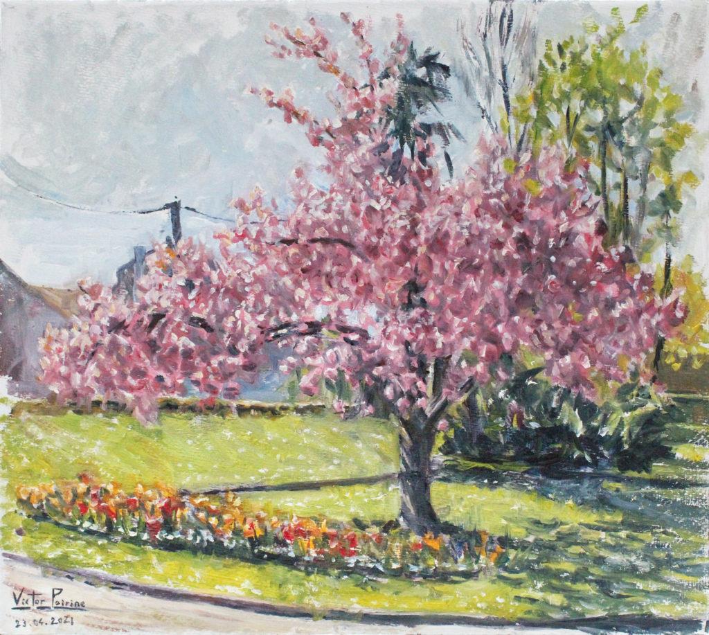 Vendu - Arbre en fleurs au parc à St-Nicolas-de-Port.  30x33,5cm huile sur panneau