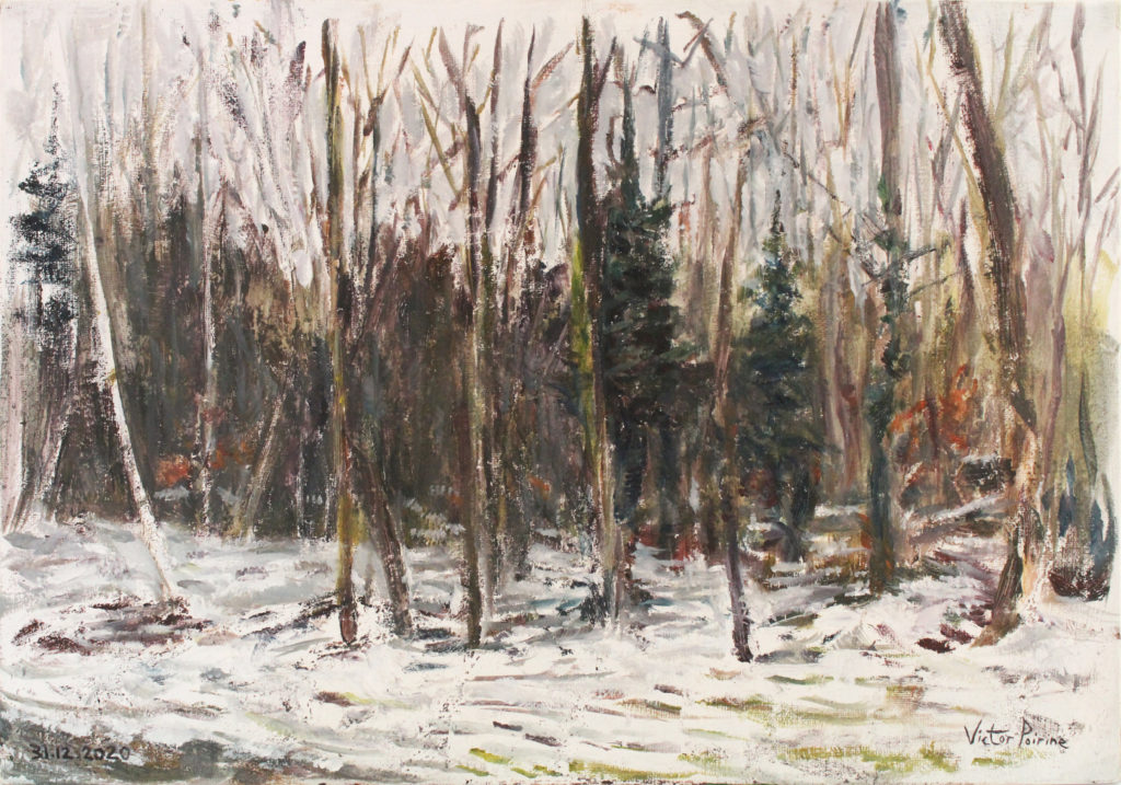 300euros - Forêt à Ban-de-Sapt dans les Vosges, près du monument aux morts. Huile sur Panneau entoilé de 35x24. 31.12.2020cm