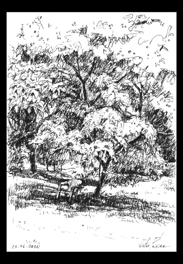 120euros - chaise sous cerisier à Laître